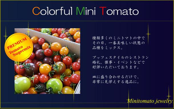 Colorful Mini Tomato